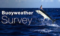 Buoyweather Survey