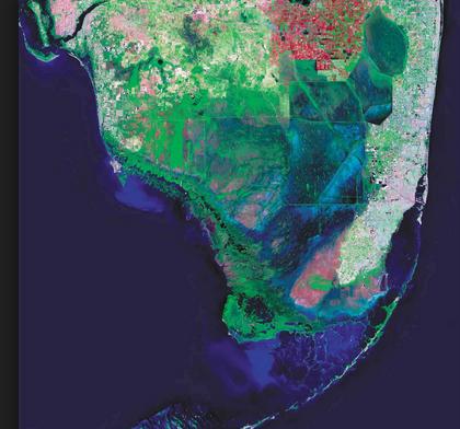 Comprehensive Everglades Restoration Plan Essay