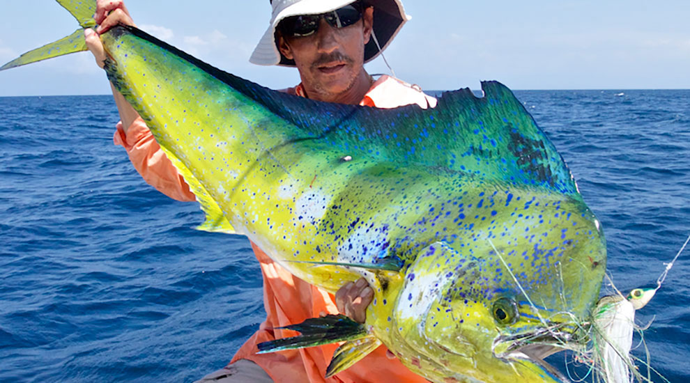 C map hot spot upper florida keys fishtrack com for Dolphin fishing florida