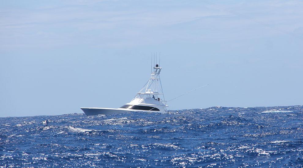 Trip report cap cana dominican republic fishtrack com for Oceanside pier fishing reports