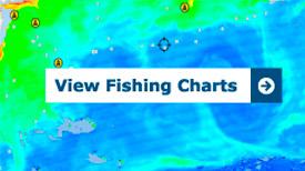 1st Street Jetty Fishing Cam | FISHTRACK COM