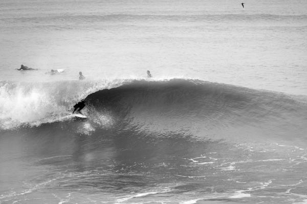 The battle for better surf texas vs virginia surfline com for Virginia beach surf fishing report