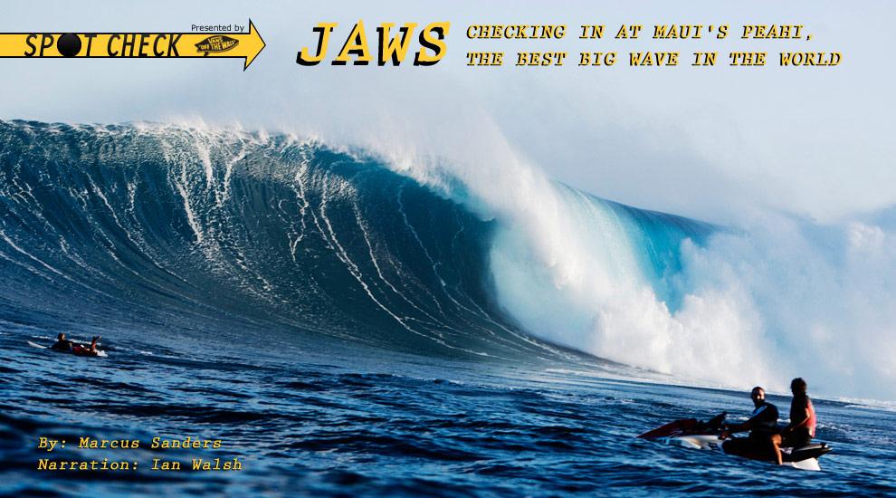spot check jaws surfline com