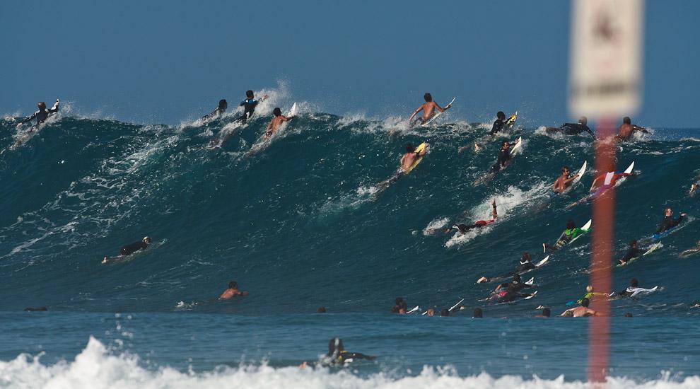 Surfing Hawaii Which Island