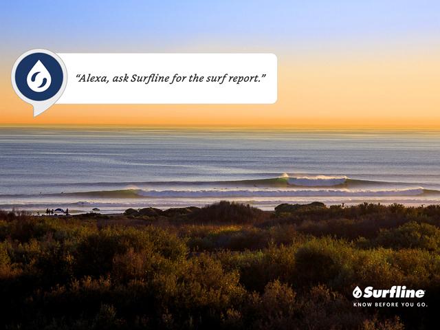 alexa ask surfline for the surf report surfline com