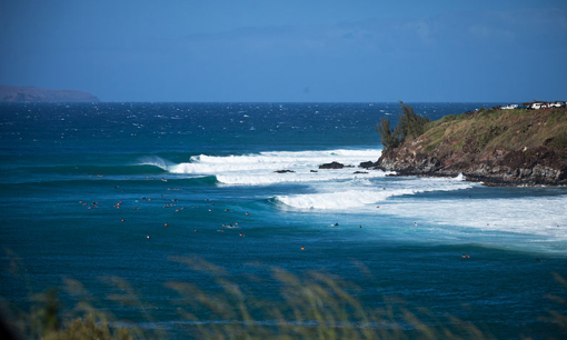 Surfline Surf Report Big Island