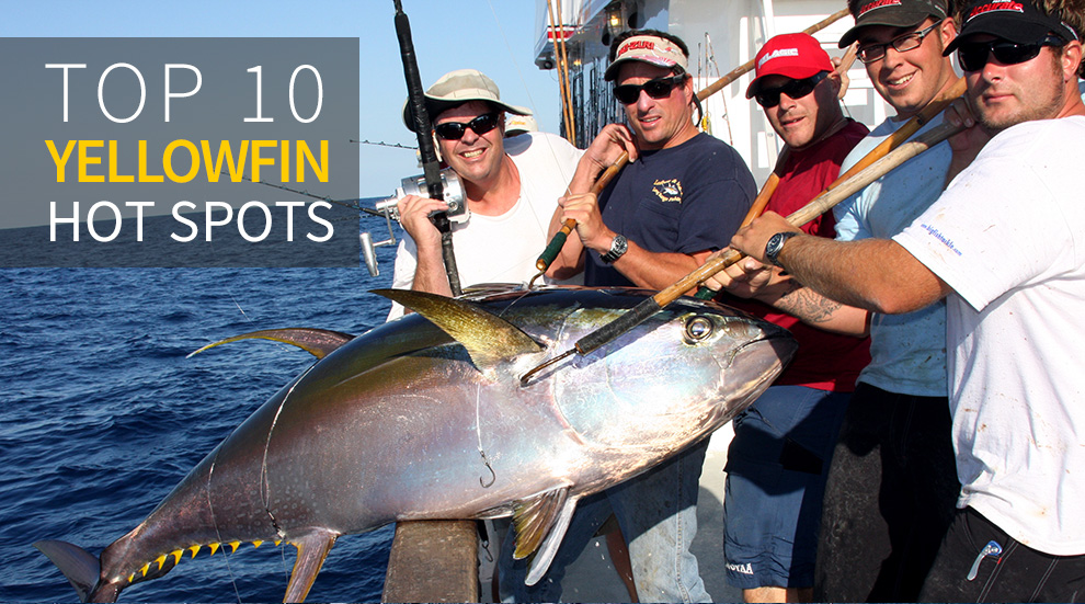 Yellowfin Are Prolific Throughout The World S Oceans And Here 10 Of Top Tuna Spots To Get You Started Photo Courtesy Red Rooster Iii