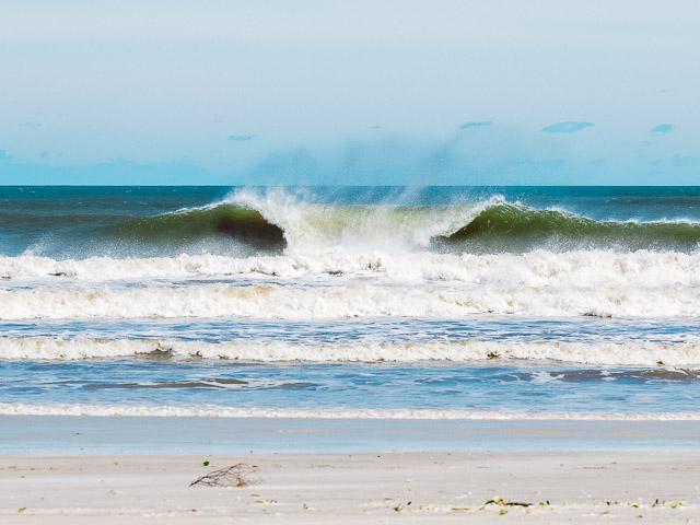 Shark S Surfer In New Smyrna Beach